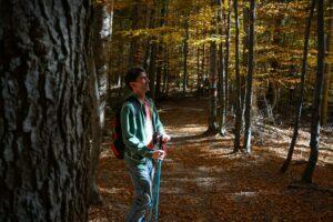 Hiking in October in Romania