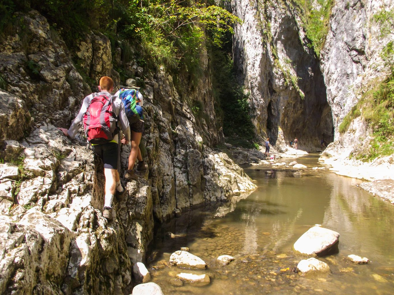 guided hiking tour romania – trascau (27)
