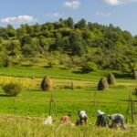Guided tour Maramures