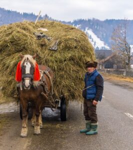 guided tours romania - rural