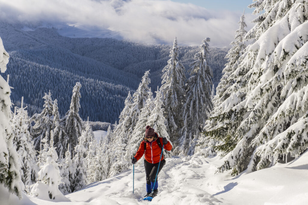 hiking in romania - private guided tours romania snowshoeing