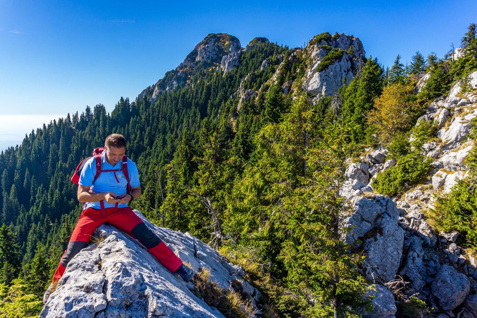 Wild Romania